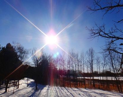 Sabeca Sunrise