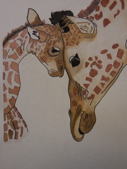 Mother and baby giraffe 1