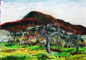 Mt. Norwottuck and Apple Trees, Holyoke Range Mountains