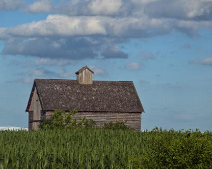 Minnesota - Barn in Summer